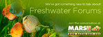freshwaterforum 960x351.jpg